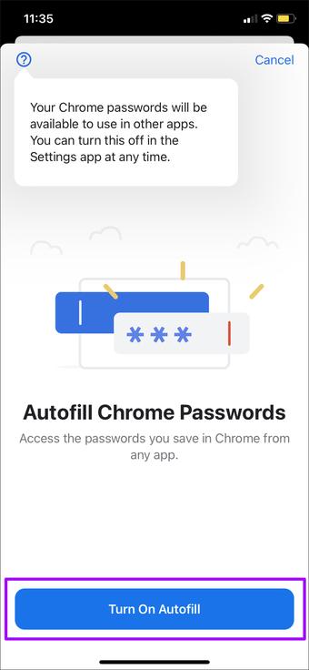 如何使用Google Chrome密码在iPhone上自动填充