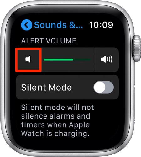 如何通过2种方式调低Apple Watch的音量