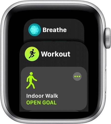 如何在Apple Watch上使用Dock