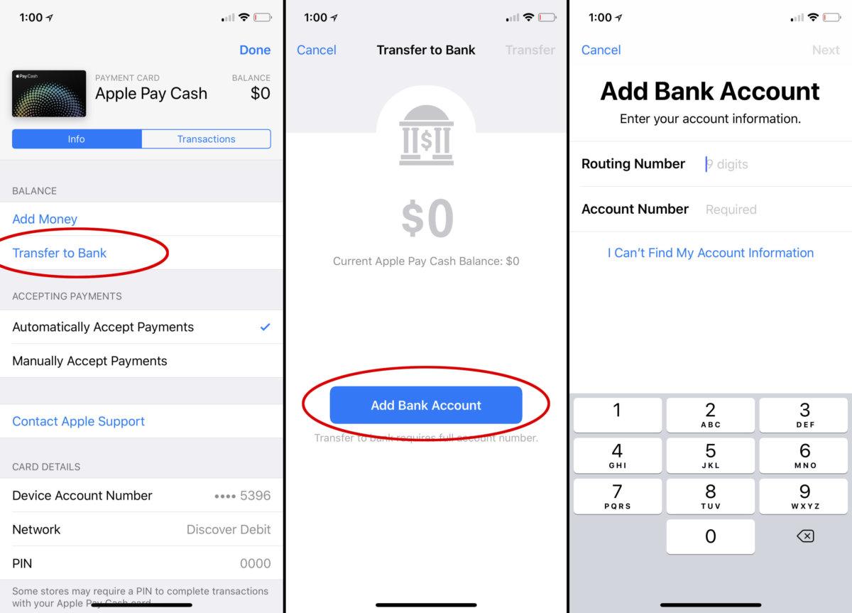 Apple Cash指南:它是什么,它如何工作以及成本如何
