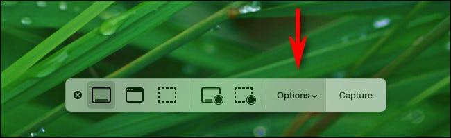 如何在Mac上使用可见的鼠标光标进行屏幕截图
