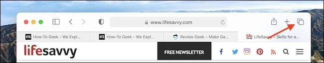 如何在Mac上的Safari中搜索打开的标签页