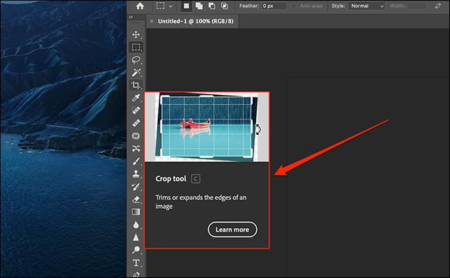 如何关闭 Photoshop 的大型动画工具提示
