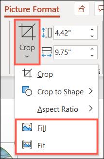 如何在 Microsoft PowerPoint 中插入和裁剪图像以适应形状