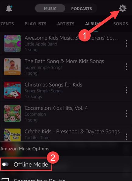 如何离线使用亚马逊音乐