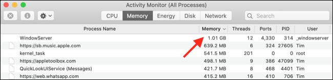 """如何在 Mac 上修复""""此网站正在使用大量内存"""""""
