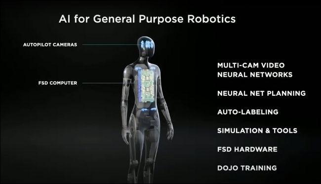 特斯拉机器人解释:你需要家用机器人吗?
