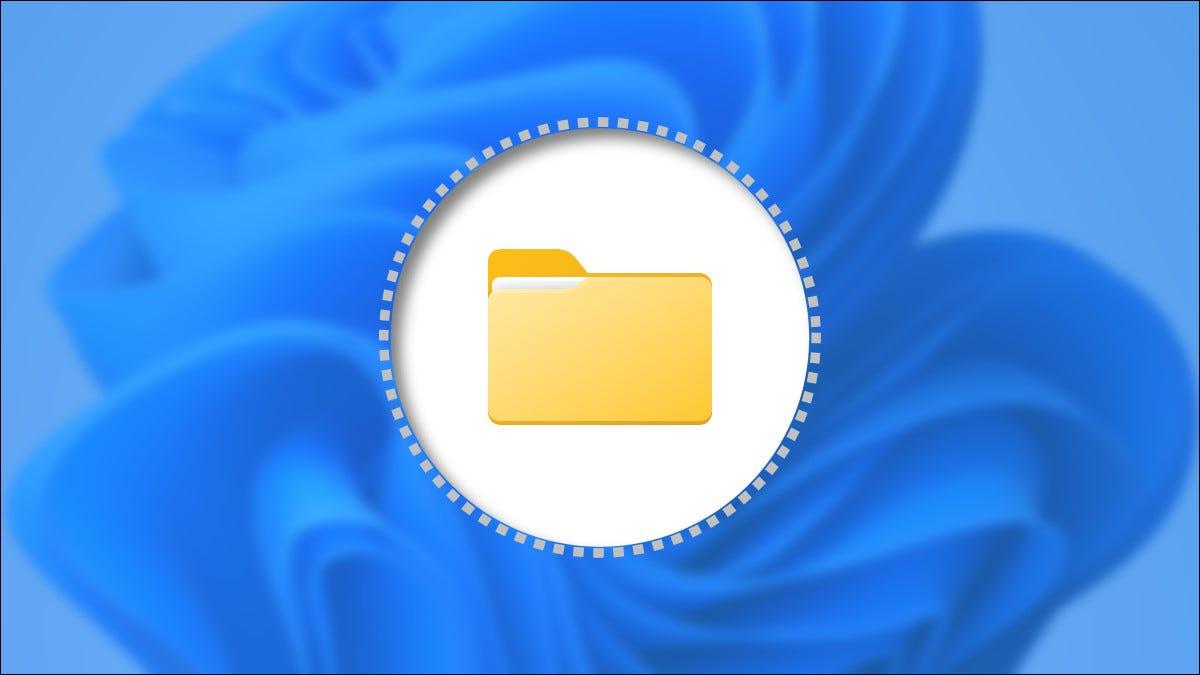 如何在 Windows 11 上显示隐藏文件