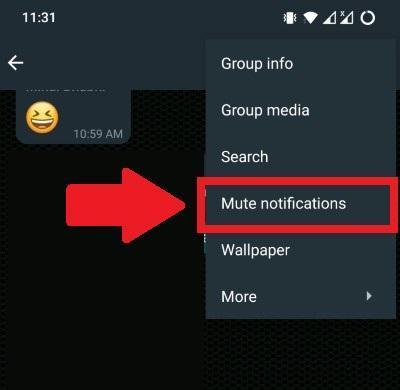 如何在 WhatsApp 上隐藏群组通知?